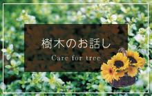 樹木のお話し