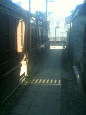 岩崎造園ブログ