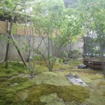 鎌倉市G邸 雑木の庭とエクステリア工事