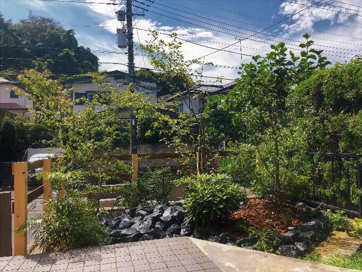 鎌倉市 坪庭和風アレンジ+オーストラリア植物アレンジ工事
