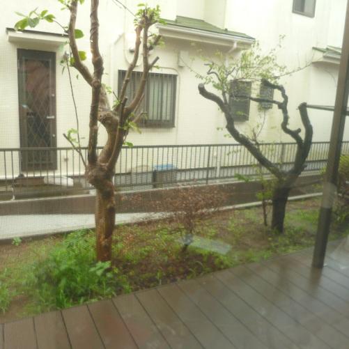 鎌倉市O邸|窓から見える坪庭アレンジ工事